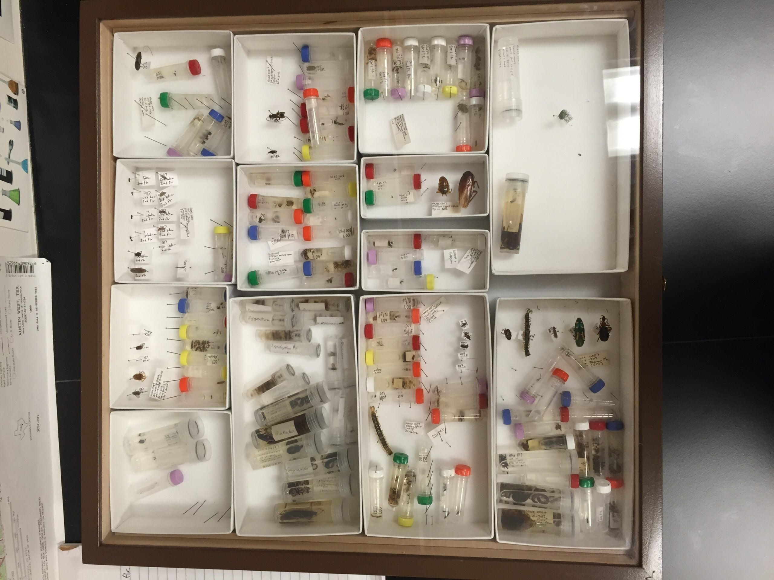 Coming Soon: 7 Continents Worth Of Household Bugs And Microbes