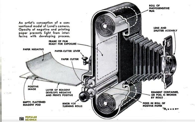 polaroid photo tips from popular science magazine
