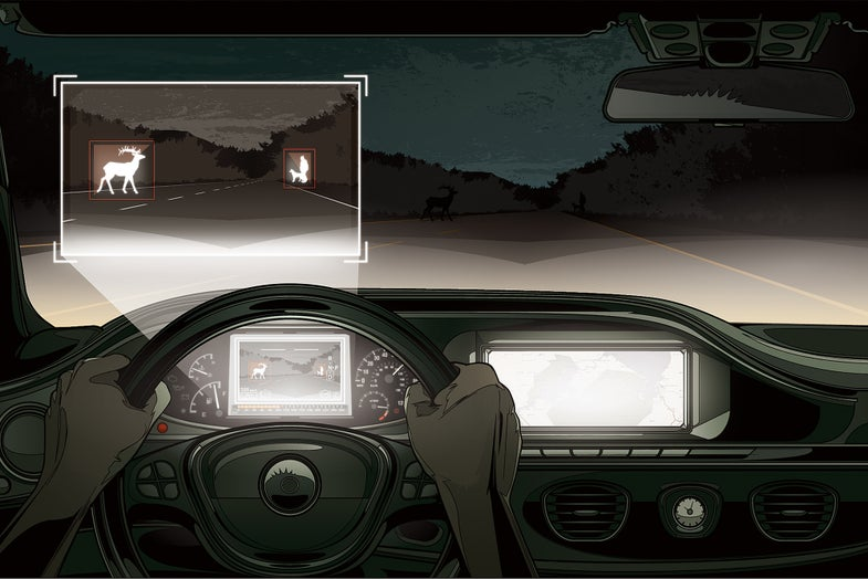Infrared Car System Spots Wildlife On The Road From 500 Feet Away