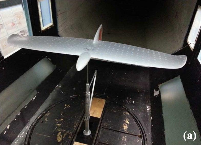 Drone Borrows Bird's Technique For Low Power Flight
