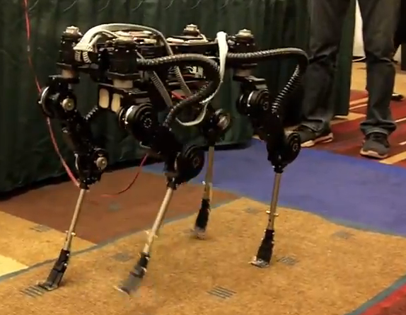 Video: South Korea's Small Robot Dog Quietly Prances Around