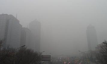 Artificial Intelligence That Battles Smog