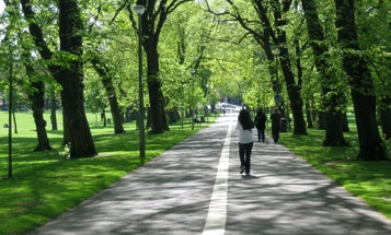 Even if you live in a city, you can get health benefits from nature