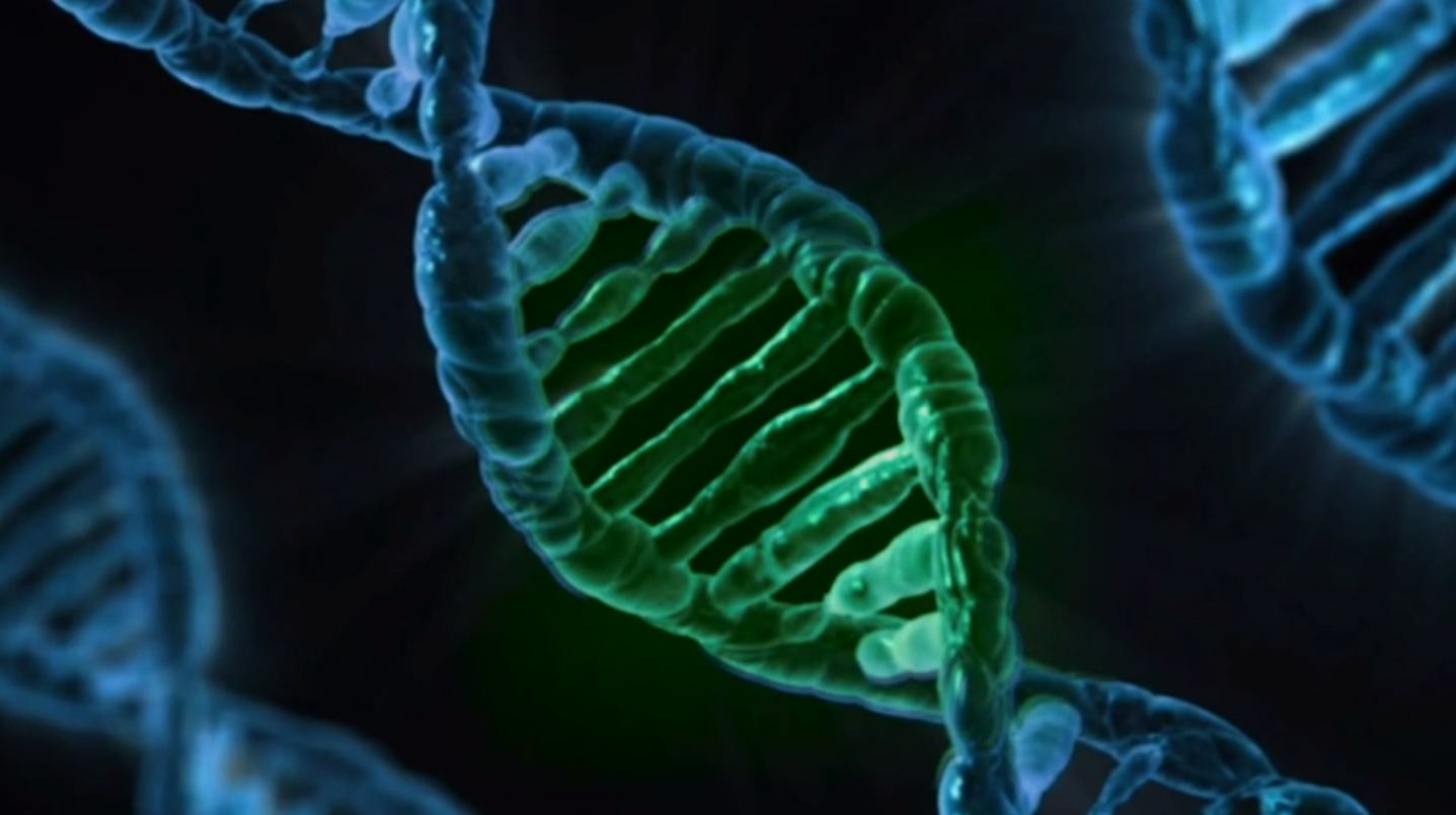 Inside Brazil's Human Genome Research Center [Video]