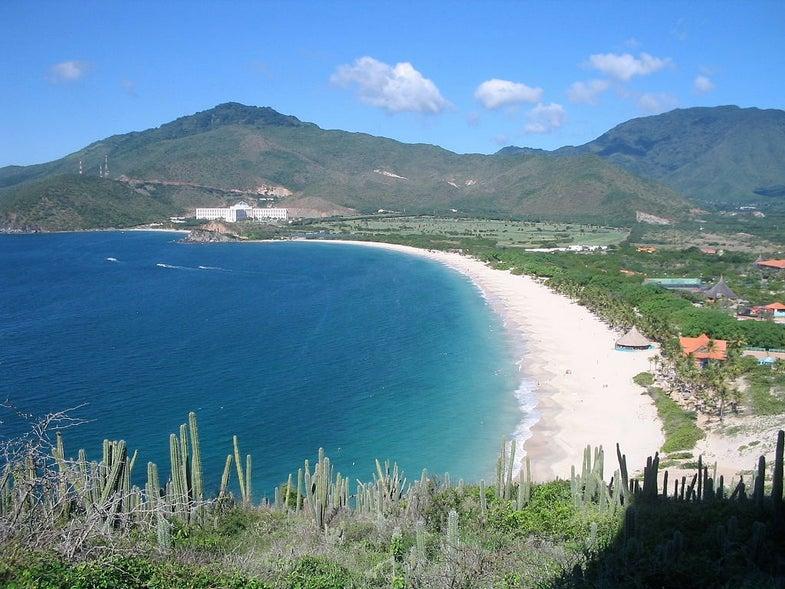 Genetics In The Caribbean Show Marks Of Atlantic Slave Trade