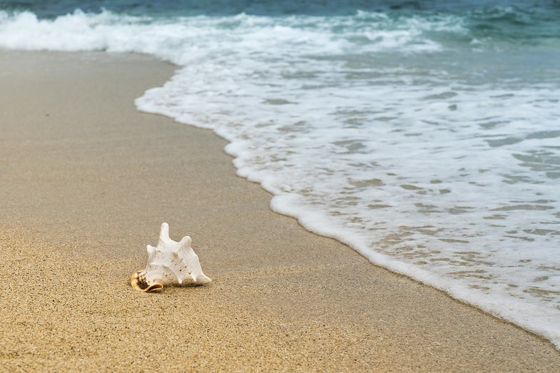 How to leave the sand behind on your next beach trip