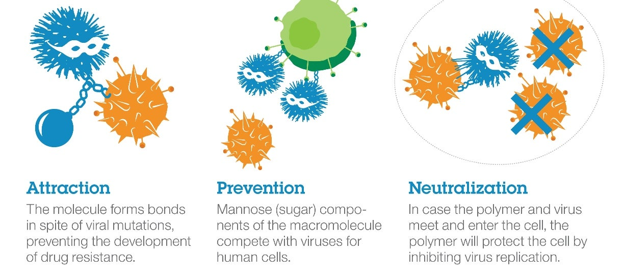 The Search of the Perfect Antiviral Has Taken A New Step Forward