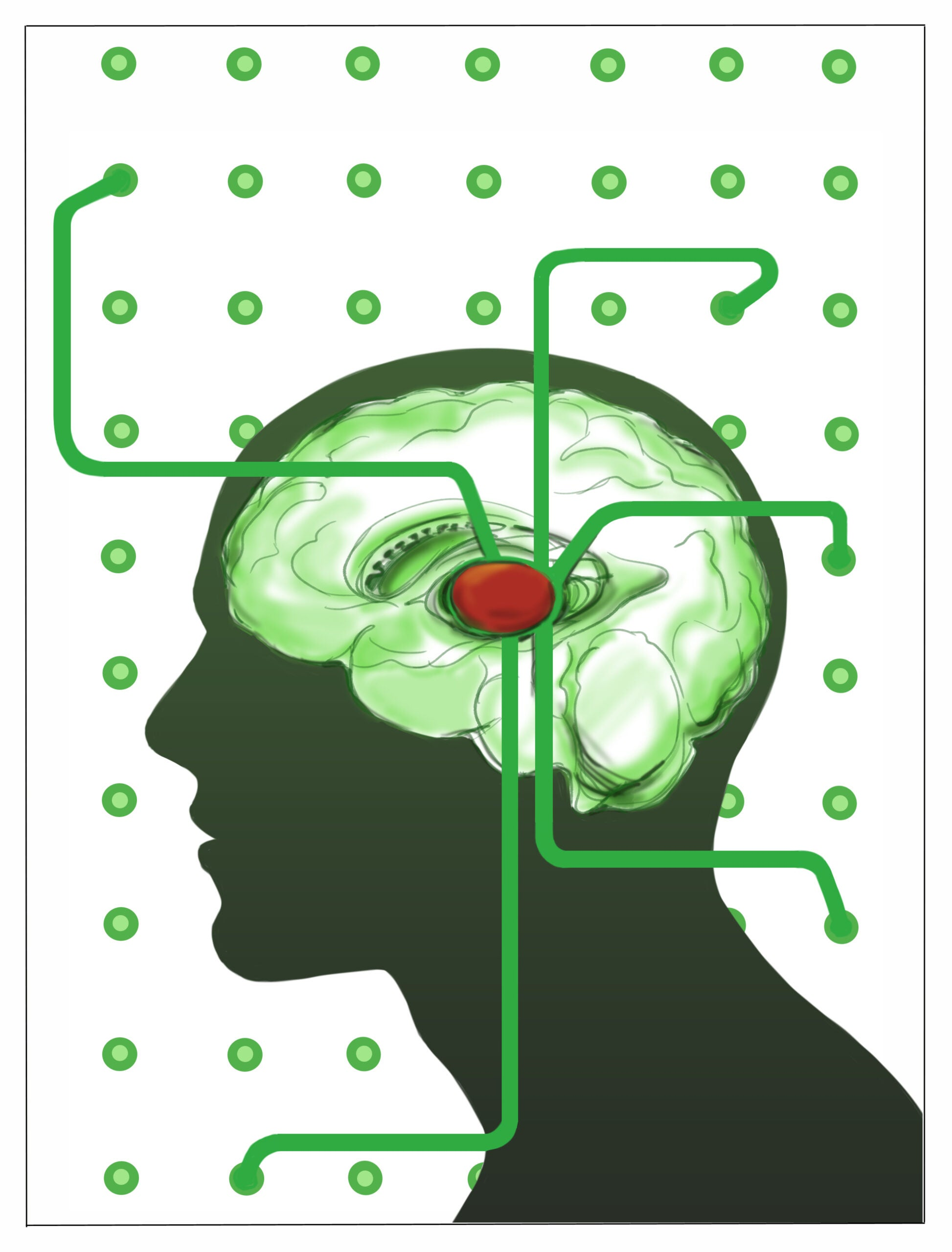 Study Shows How Our Brains Are Able To Multitask