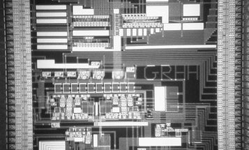 Neuronal Computer Chips Communicate Like Brain Cells