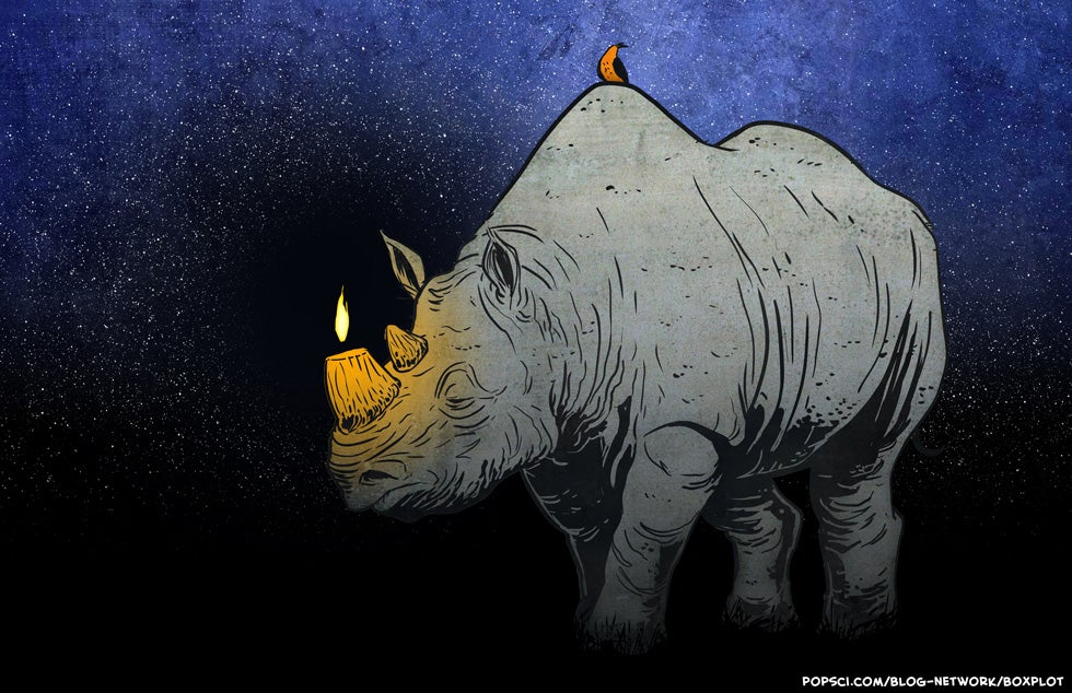 httpswww.popsci.comsitespopsci.comfilesimport2013ex-rhino.jpg