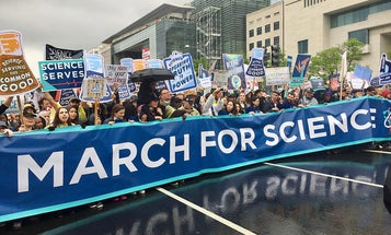 Science needs to be more inclusive and women are making it happen