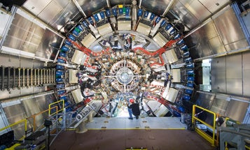 The Large Hadron Collider Just Disappointed A Lot Of Physicists