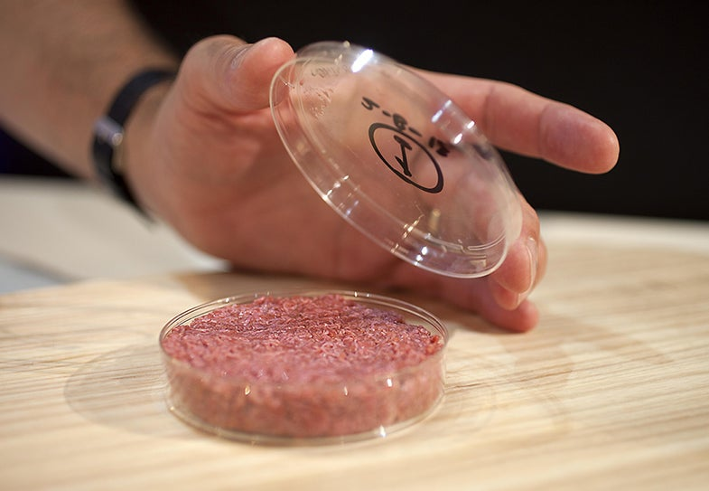 A Roundtable Discussion On The Future Of Meat