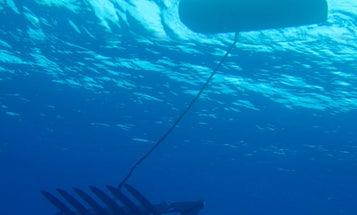 Ocean-Crossing Robots Reach Hawaii, Setting a New Distance Record