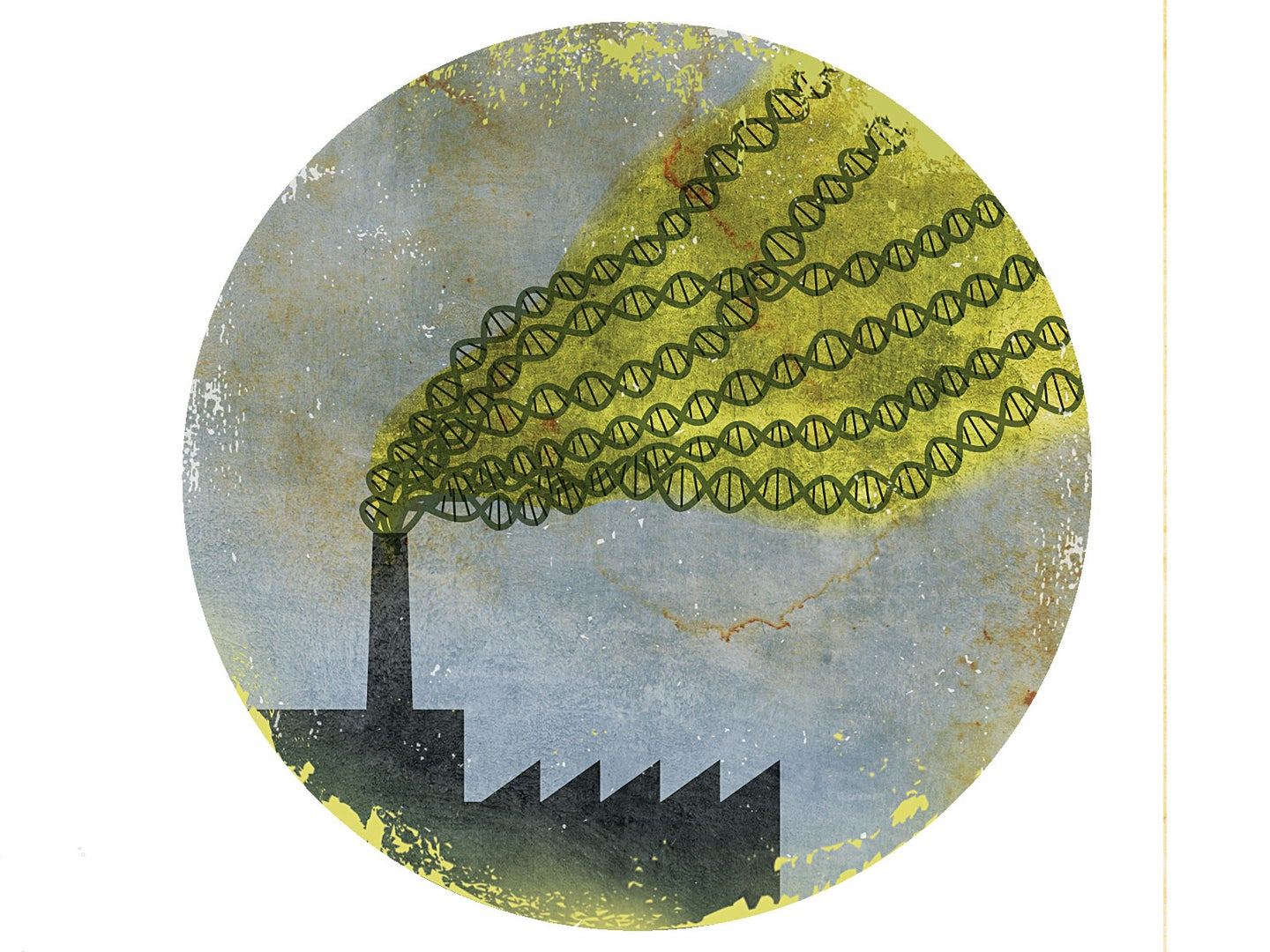 Big Idea: Pollution Can Be Inherited