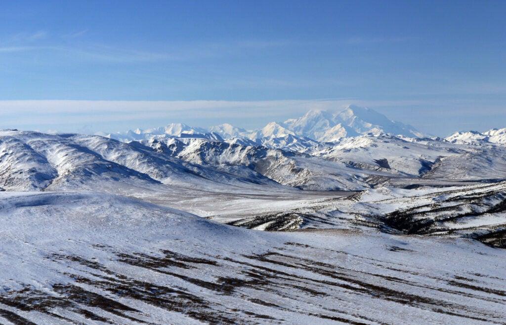 Winter in Denali