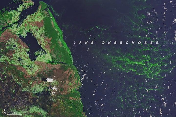 satellite image of southwestern Lake Okeechobee