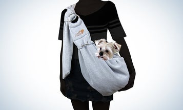 Five rad and random dog products I found this week