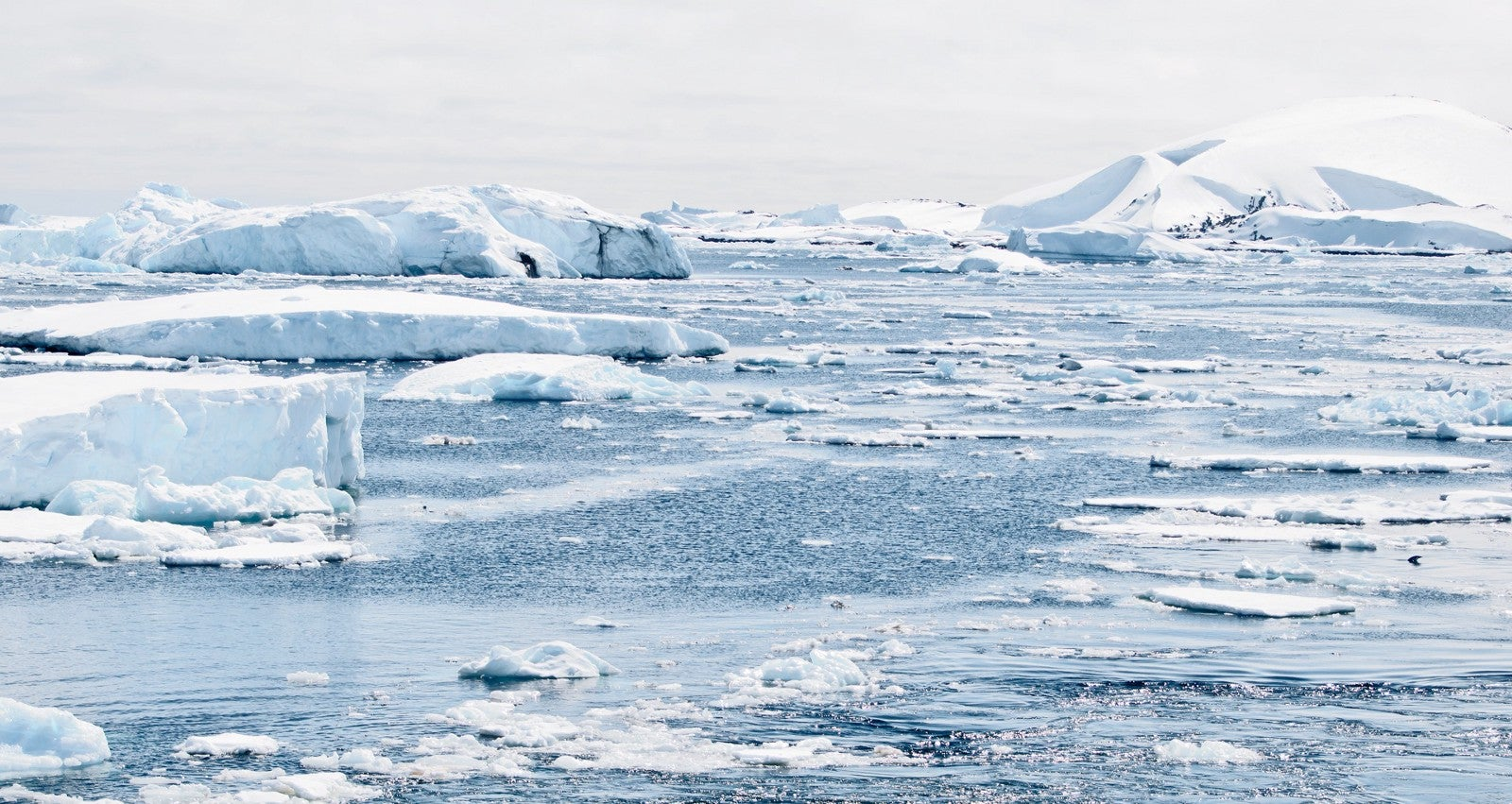Ancient Waters Are Keeping The Southern Ocean Cool