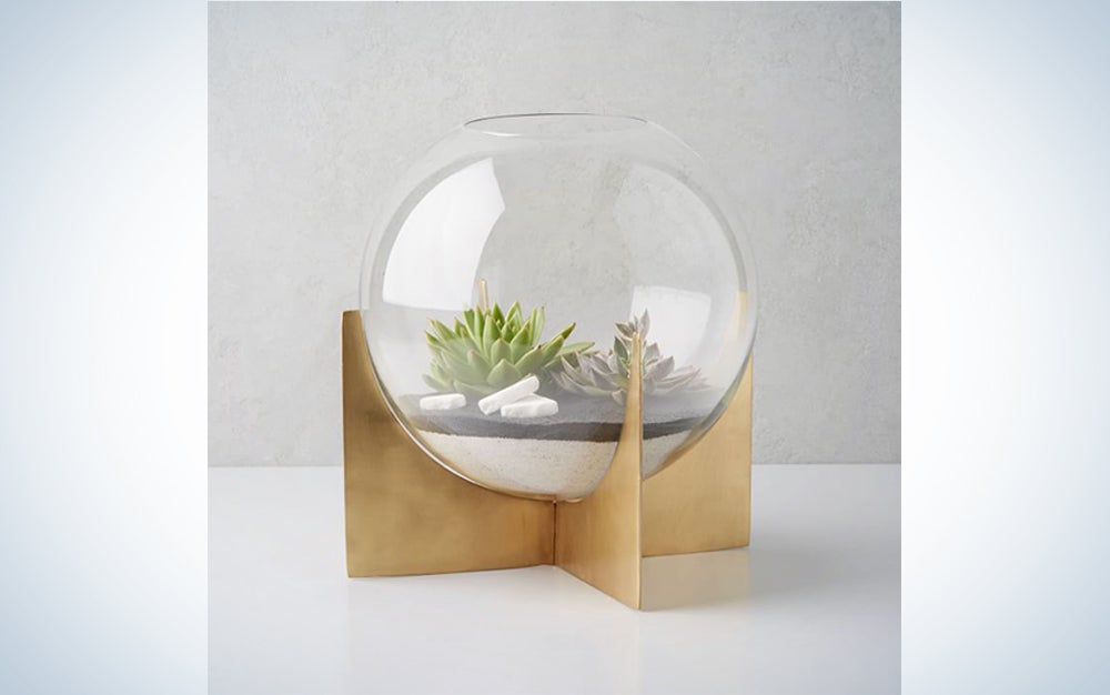 a glass terrarium with succulents