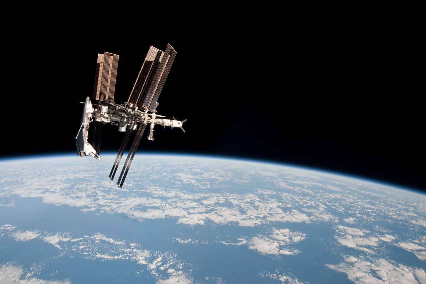 We are basically positive that the Russians did not find alien bacteria in space