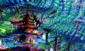 These Are What the Google Artificial Intelligence's Dreams Look Like