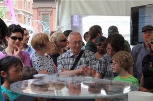 What We Saw at the World Science Festival: Quantum Levitation