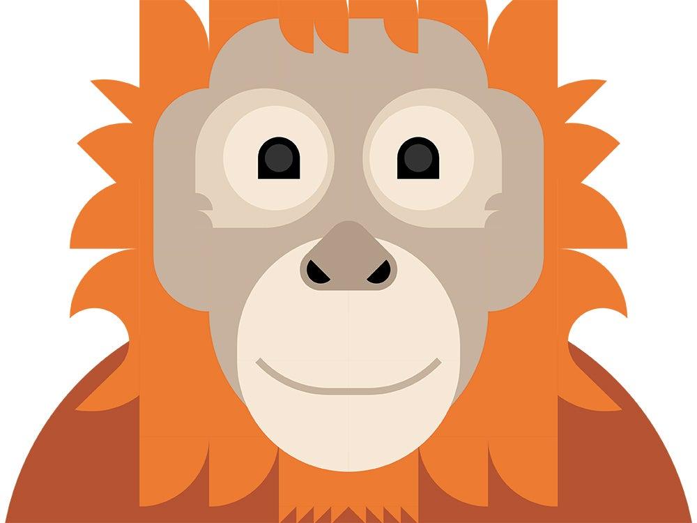 """""""orangutan"""""""