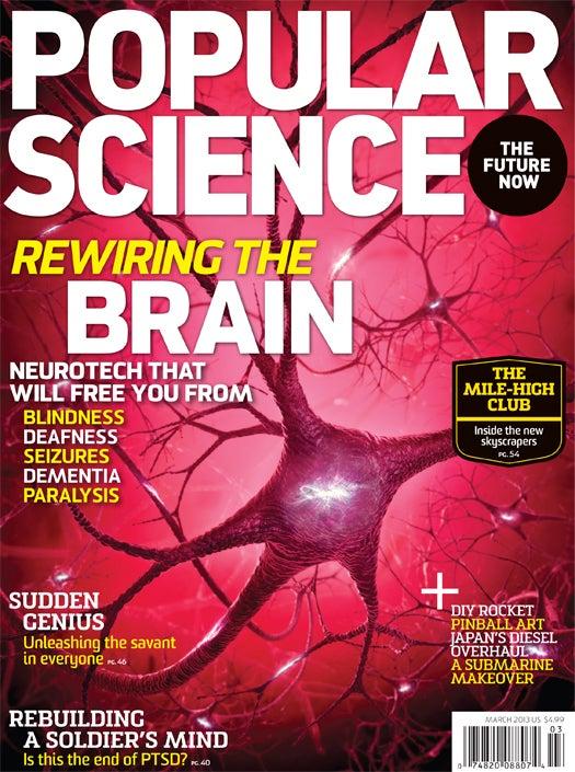 March 2013: Rewiring The Brain