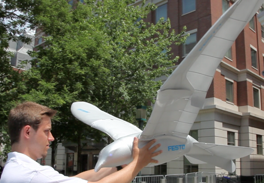 Video: What We Saw at the World Science Festival's Innovation Square