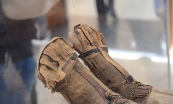 Scientists Just Made A Brand-New Ancient Human Mummy Leg