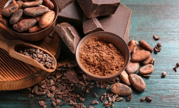 Humanity's obsession with chocolate may go back much further than we thought