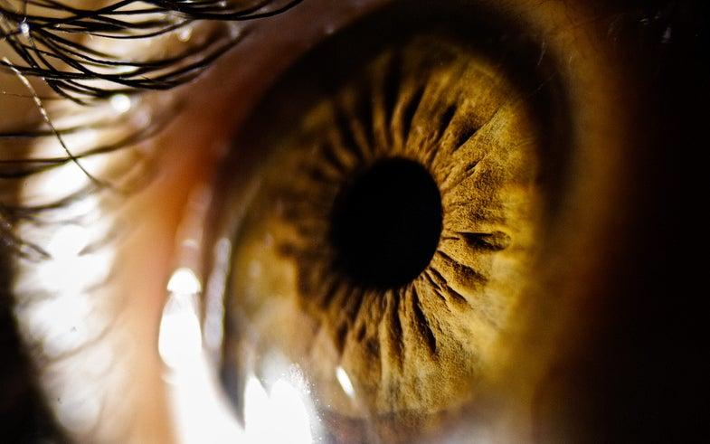 close-up of a human eyeball and hazel-brown iris