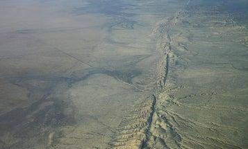 Nature's Earthquake Forecaster