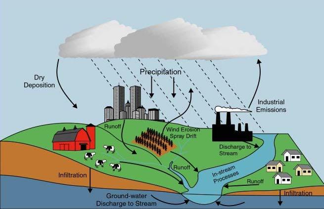 precipitation cycle