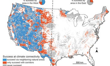 'Climate Corridors' Could Save Wildlife