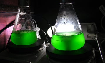 Nano-Engineered Bioconstructs Perform Photosynthesis Faster Than Nature Does