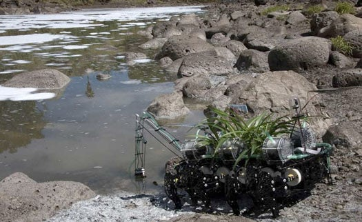Autonomous Roving Robot Seeks Out Polluted Water to Sustain Its Onboard Plant Symbiotes
