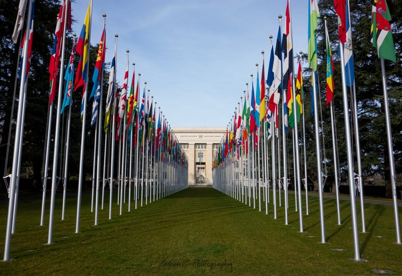 UN Resolution Expands Basic Human Rights to the Internet