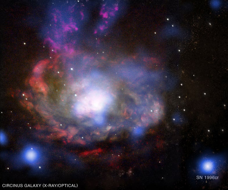 Discovering Supernovae