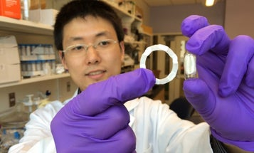 New Dissolving Ring Delivers Drugs Through Your Stomach For Seven Days