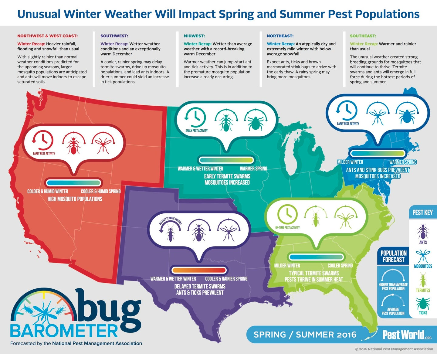 Bug Forecast for spring in the USA
