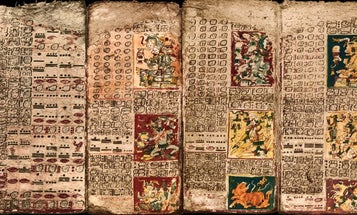 Was This Maya Manuscript Used To Plan The Next Party?