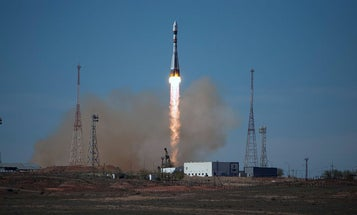 Russia's 'Space Ark' Returns All Of Its Lizards And Half Its Mice Safely To Earth