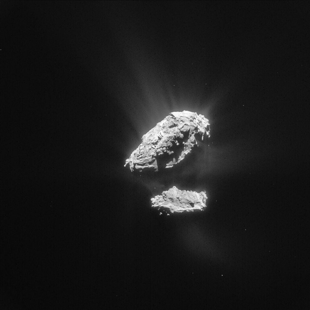 rubber duck shaped rock on black background, surrounded by light haze