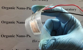 This Battery-Free Generator Is Made From Fish Scales
