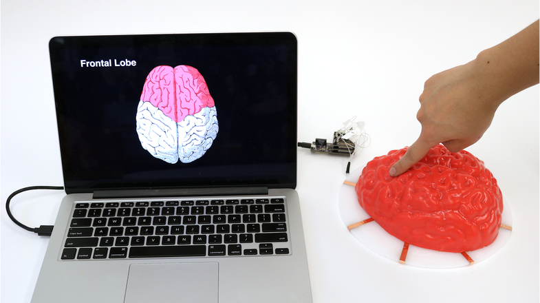 What a Jell-O brain tells us about the future of human-machine interaction