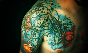 Science Ink: A Taxonomy of Tattoos Inspired by Science