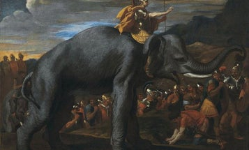 Hannibal's Famous Alps Crossing Revealed By Ancient Animal Poop