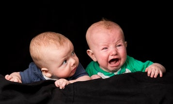 Babies Recognize Each Other's Moods, Study Says